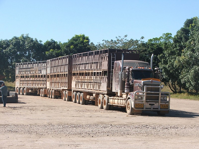 Photo Kenworth Cattle Truck Road Train Truck Photos