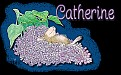 Catherine hm needabreak
