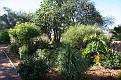 Ivydale Garden Polokwane (2)