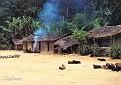 Massif du Chaillu Village
