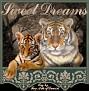 protectingmycub-sweetdreams
