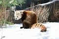 070216 Natl Zoo216