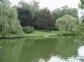 Leeds Castle Cedar Pond1a