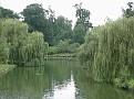 Leeds Castle Cedar Pond1d