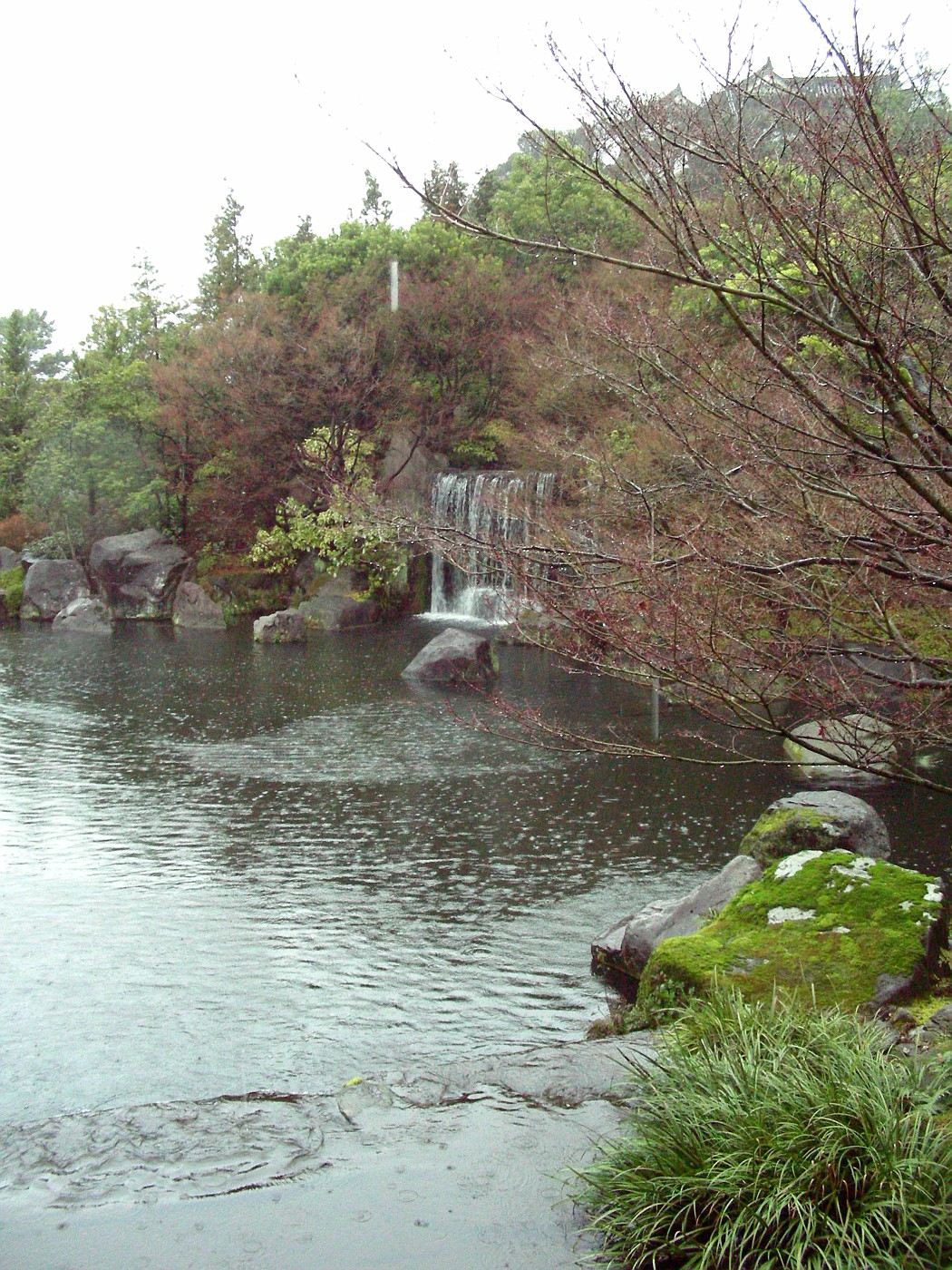 Pond in the garden of the lord's house