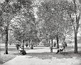 "1900 | Chicago. ""A walk in Lincoln Park"""