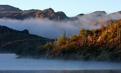 Saguaro Lake AZ