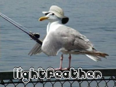 Lightfeatherseagul
