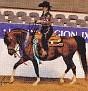 TAMAR DRAMA QUEEN #636764 (Tamar Final Tribute+ x Tamar Carousel, by Neposzar+) 2005 bay mare bred by Tamar Arabians/ Tamara K Hanby