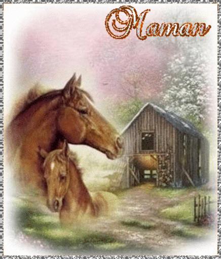 Maman - Horse-Sandra-Oct 12, 2018