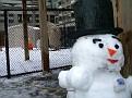Building a Snowman Jan 2009 (5)