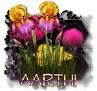 Aarthi - 3094