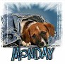 1Monday-blujeanpup