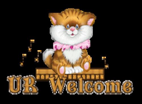 UR Welcome - CuteKittenSitting