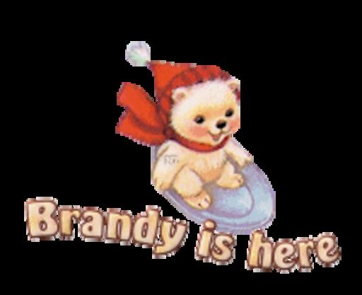 Brandy is here - WinterSlides