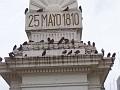 Welcome to plaza de Mayo