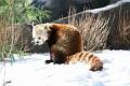 070216 Natl Zoo215