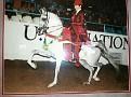 AA PRISTINE+ #431513 (Bask Flame x Sildeyna, by Silfix) 1988-2012 grey mare