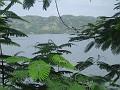 Des flambroyants tout près du lac de Peligre