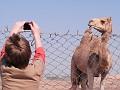 Howard and Camel