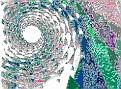 0539_EVAvi-vi.jpg