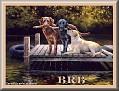 dogshavingfuntjcBRB-UC