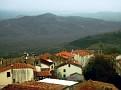 Blick über die Häuser von Motovun