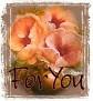 1ForYou-peachfloral-MC