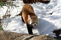 070216 Natl Zoo149